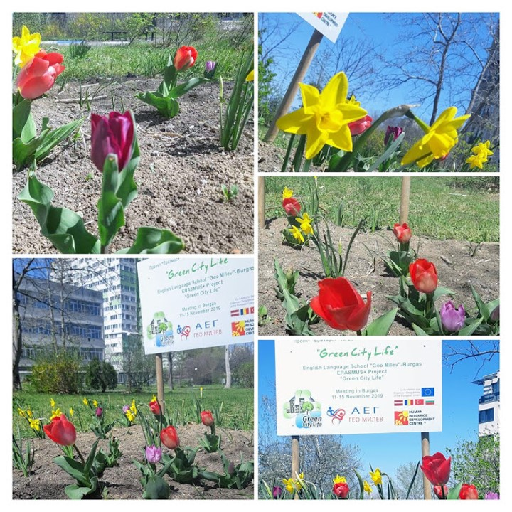 2020 Celebrating Earth Day in spring with our beautiful garden